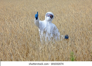 success - agricultural engineer with thumb up gesture on field of crops