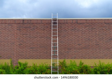 successful business solution ladder over wall finance freedom