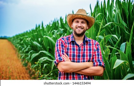 Successful farmer standing in a corn field. Agricultural concept