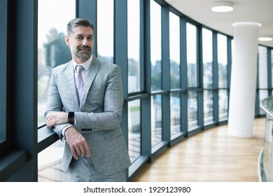 Successful middle aged businessman wearing gray suit posing near windows at his company.