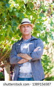 Successful winemaker at their vineyard. Handsome senior man in straw hat and shirt posing in garden. Traditional family winemaker business. Confident vintner with arms folded standing at vine row.
