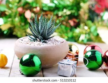 Imagenes Fotos De Stock Y Vectores Sobre Christmas Tree In A Pot