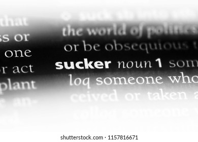 sucker word in a dictionary. sucker concept.