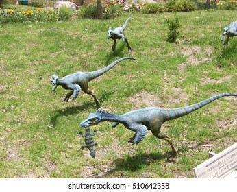 3771 Velociraptor Images Royalty Free Stock Photos On Shutterstock