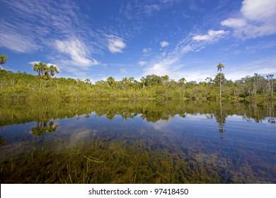 Sucuri lagoon, Pousada Jardim da Amazonia. SAO JOSE DO RIO CLARO, MATO GROSSO, BRAZIL.