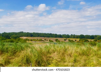 Suffolk Countryside Landscape on a Summers Day with a Blue Sky