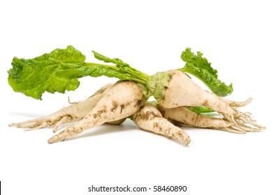 sugar beet on white background