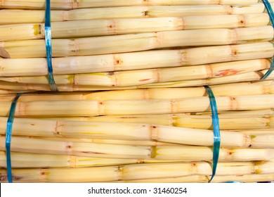 Sugar cane bundled for sale