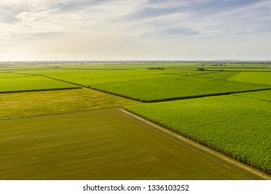 Sugar Cane farm in North Queensland
