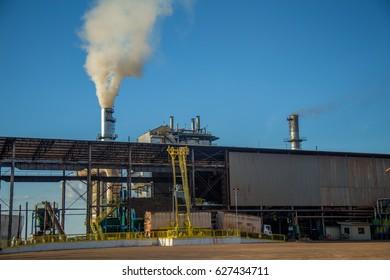 sugar cane industry