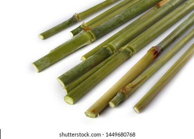 Sugar cane isolated on white