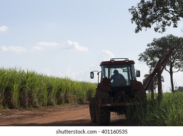 sugar cane plantation and tractor