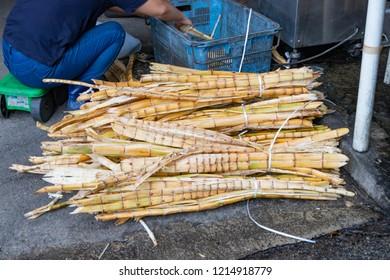 Sugar cane squeezing work at Okinawa Ishigakijima
