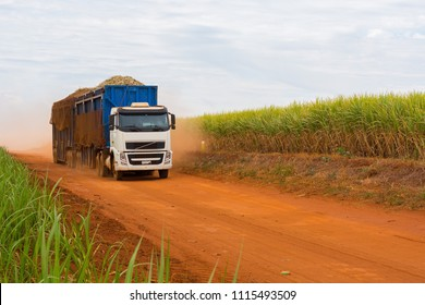 Sugar cane truck on the road