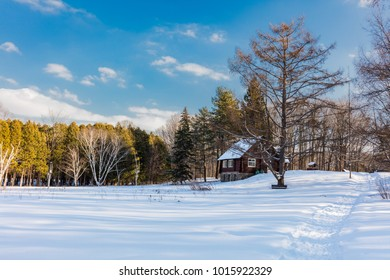 Sugar shack in deep mid winter in a boreal forest Quebec Canada.