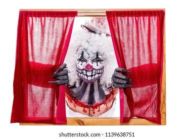 Sugar Skull looks through a window between curtains