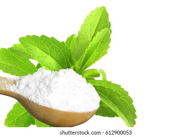 sugar substitute Stevia plant and extract powder on white background