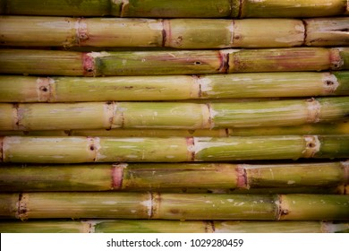 Sugarcane on a stall