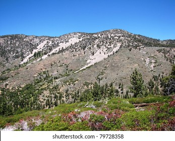 Sugarloaf Mountain, San Bernardino National Forest, California