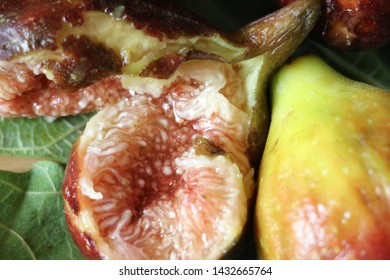 sugary DELICIOUS AND JUICY FIG