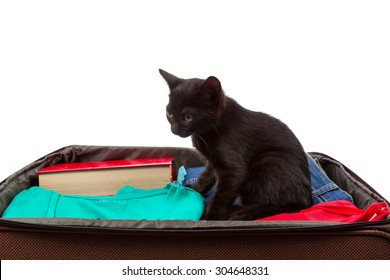 suitcase with things sticking out and a black cat