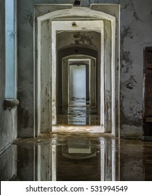 The suite of rooms in abandoned building