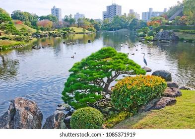 Suizenji garden in Kumamoto, Kyushu, Japan.