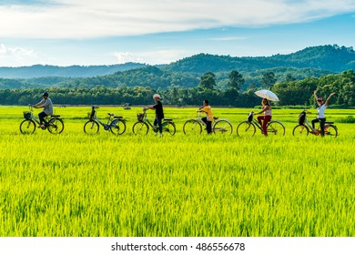 Sukhothai, Thailand - September 17,2016 : Travellers on their bicycle along rice field in Sukhothai, Thailand. People in countryside of Sukhothai still use a bicycle as their communal transportation.