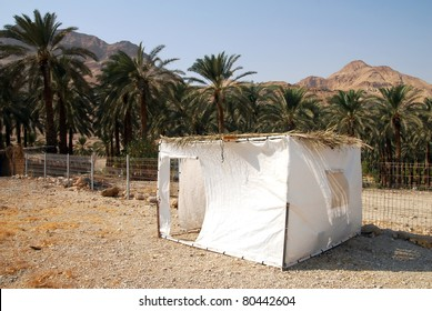 A sukkah in the desert. A sukkah is a temporary hut constructed for use during the week-long Jewish festival of Sukkot. It is topped with branches and often the interior is decorated.