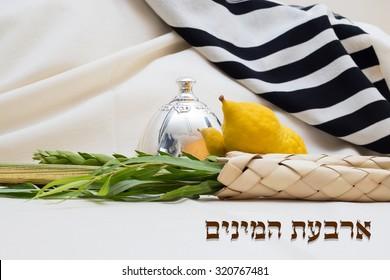 Sukkot. Etrog lulav hadas arava . The four species for Sukkot. Text = four species