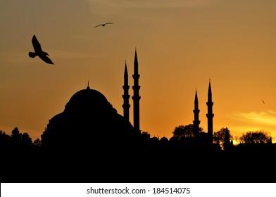 Suleymaniye Mosque silhouette at sunset, Istanbul / TURKEY