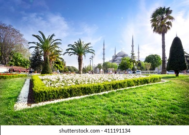 Sultan Ahmed Mosque (Blue Mosque) in Istanbul with lawn