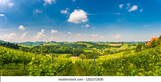 Sulztal, Styria / Austria - 2 June 2018: Vineyards panorama Sulztal Leibnitz area famous destination wine street area south Styria , wine country in summer. Tourist destination. Green hills and crops