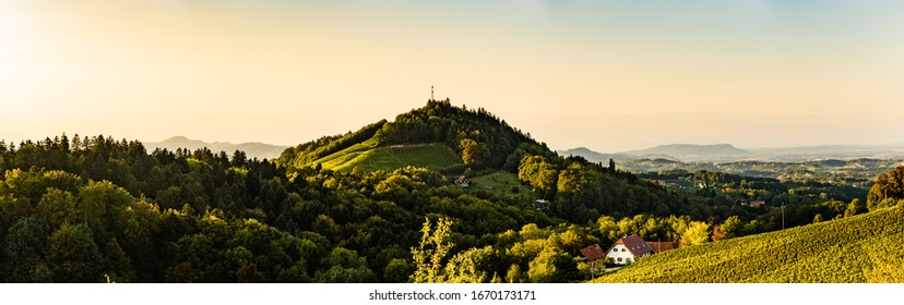 Sulztal, Styria Austria - 2 June 2018: Vineyards Sulztal Leibnitz area famous destination wine street area south Styria , wine country in summer. Tourist destination. Green hills and crops of grapes.