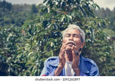 Sumatra, Indonesia - January 13, 2018: Elderly Batak farmer is seen next to his coffee plantation in Samosir Island, Lake Toba, Sumatra, Indonesia.
