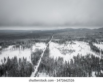 The Sumava National Park or Bohemian Forest National Park is a national park in the South Bohemian regions of the Czech Republic  along the border with Germany and Austria. NP is protcted by UNESCO.