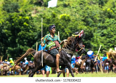 SUMBA, INDONESIA - FEBRUARY 8, 2018: Pasola is tradition in Sumba Island, when young brave knight playing war game.