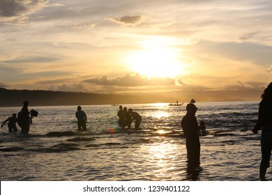 "SUMBA, INDONESIA - FEBRUARY 8, 2018: ""NYALE"" Before starting the Pasola festival, Sumba People gather together to catch sea worms called ""NYALE""."