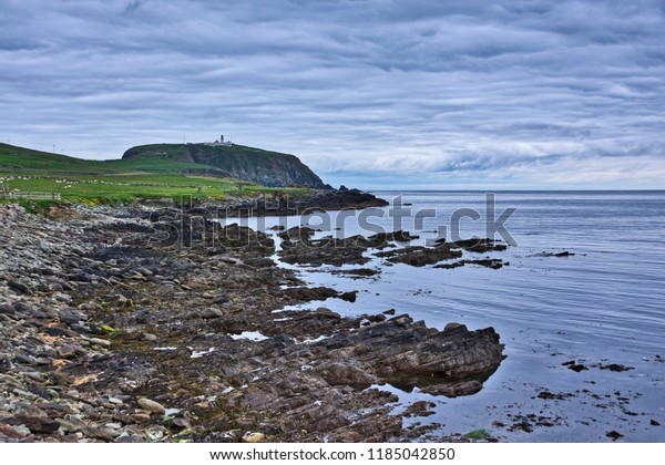 Sumburgh Head, Shetland, Scotland