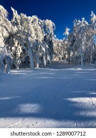 Sumit Frozen Winter Time