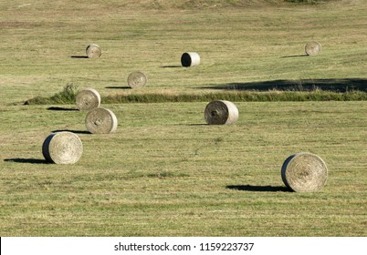 in summer, after cutting the grass, the hay is gathered in round boots or millstones and finished to dry in the sun, big millstone in the foreground at the wide angle