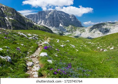 Summer alpine landscape. Hiking path to lake Drakolimni in Pindus mountains, Zagori, Greece.