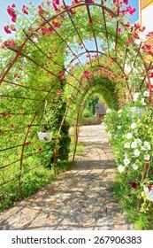 Summer arch covered by vine. Shot near Tyudiv, Carpathian Mountains, Ukraine.