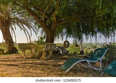 Summer in Arruda dos Vinhos.