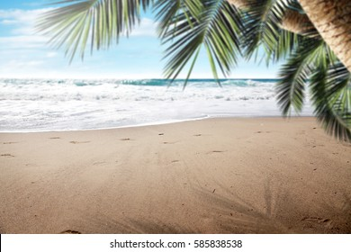 summer background of beach and free space for your decoration
