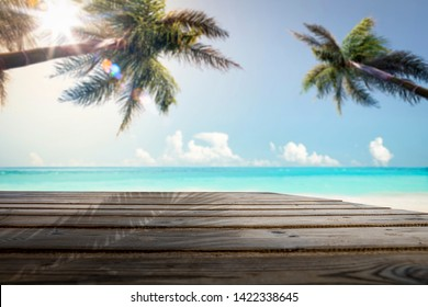 Summer background of free space and background of palms with sky and sun.