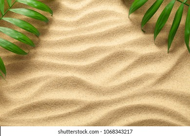 Summer background with green palm leaves. Beach texture. Copy space. Top view