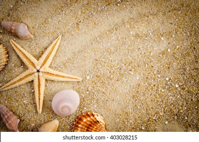 Summer background. Holiday season. Marine life. Card with sand and shells, copy space.