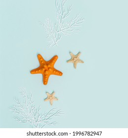 Summer background with red and yellow seastar and white coral on pastel blue. Concept of travel and vacation. Flat lay, top view, copy space