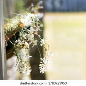 Summer background screensavers. A straw hat with a white flowers hangs on the background of an white fence. Rustic style